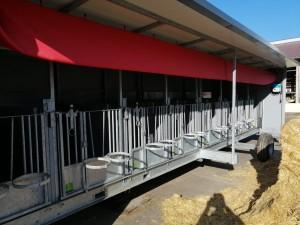Mobile Kälberhütten Sonderanfertigung Schrijver TopCalf Dr. Knopf & Oswald GmbH mit Schlauchbelüftung